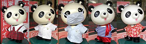 中医薬研究会、会員店の店頭パンダ